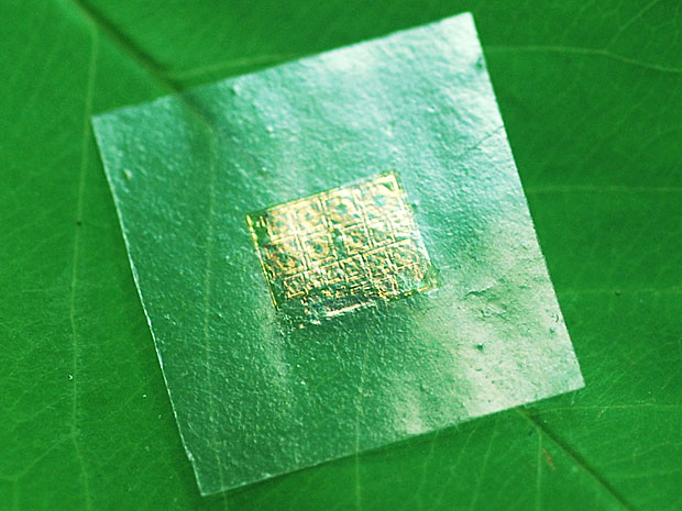 Green Microchips Created on Cellulose Nanofibril Paper