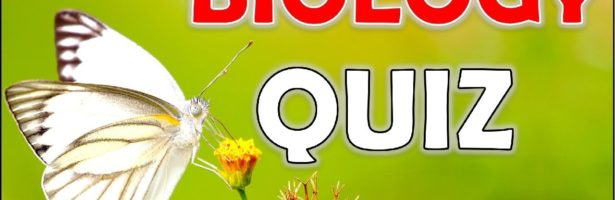 "How Much Do You Know About ""BIOLOGY""? Test/Trivia/Quiz"