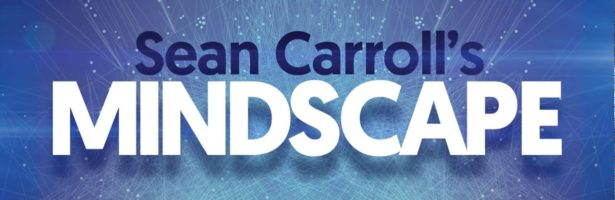 Mindscape 94   Stuart Russell on Making Artificial Intelligence Compatible with Humans