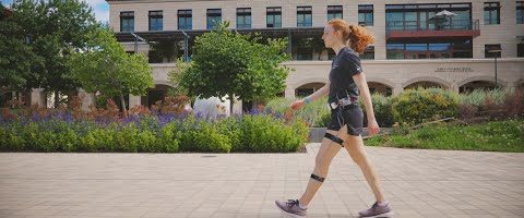 Stanford engineers design a more accurate calorie counter